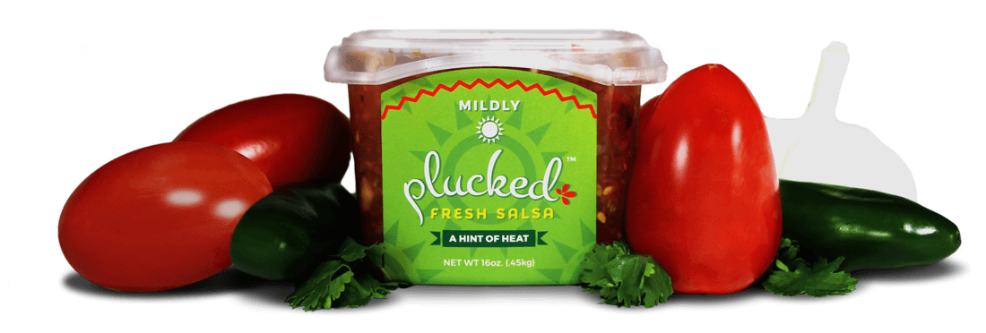 Mildly Plucked Salsa With Fresh Vegetables