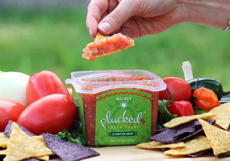 Mildly Plucked Fresh Salsa Chip Dip