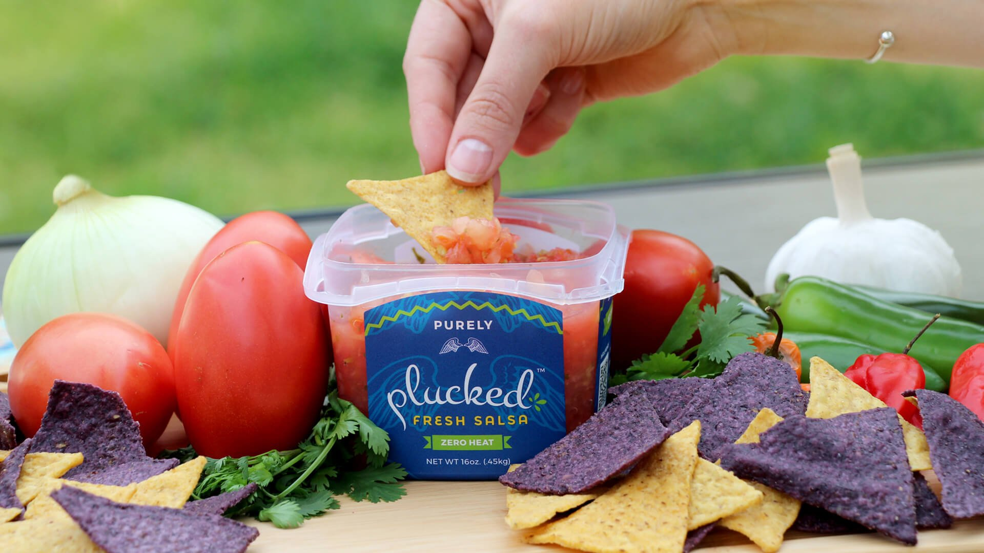 Purely Fresh Plucked Salsa with Fresh Vegetables